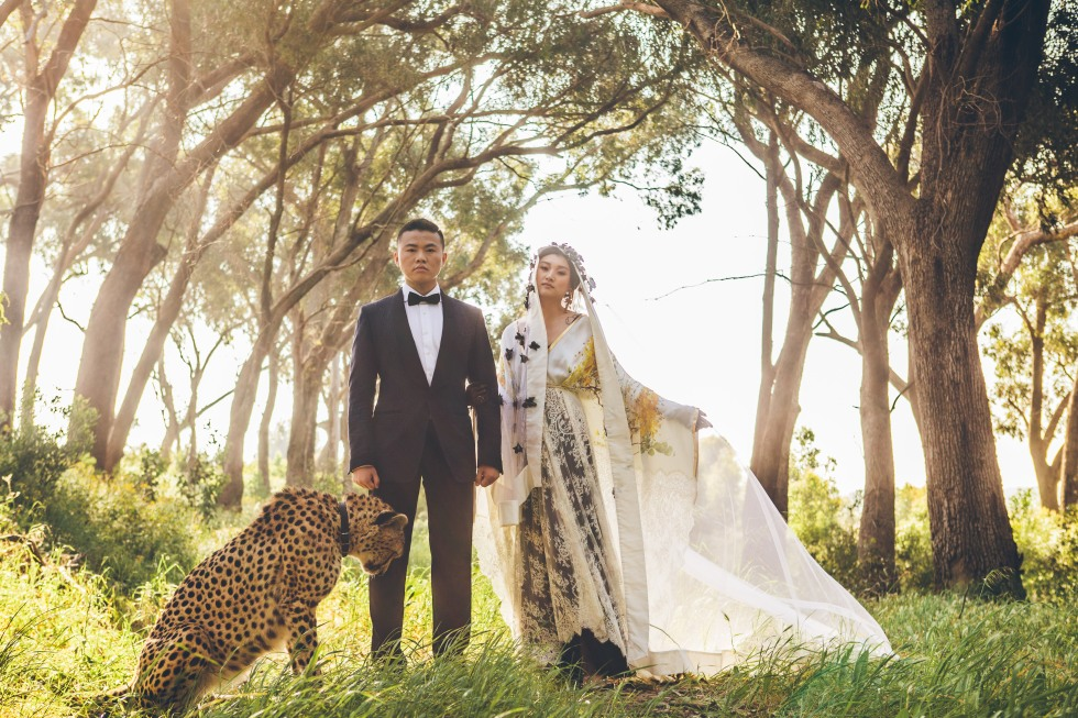 bridal-couture-tzg-partners-shanna-jones-photography-3284