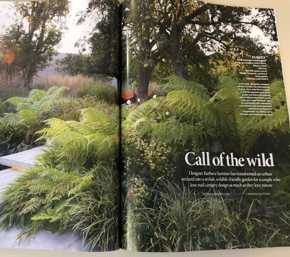 The best garden designer in south east London